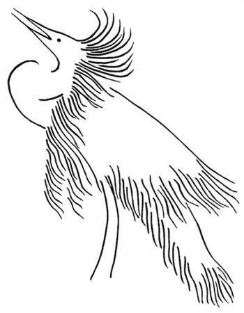 Snowy White Egret Pen Drawing